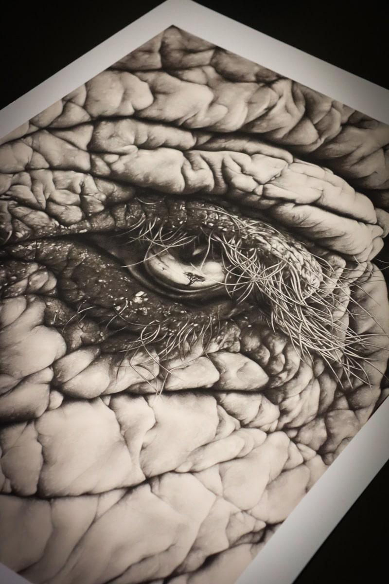 Dettaglio della stampa de Lo specchio dell'anima di Angela Ongaro