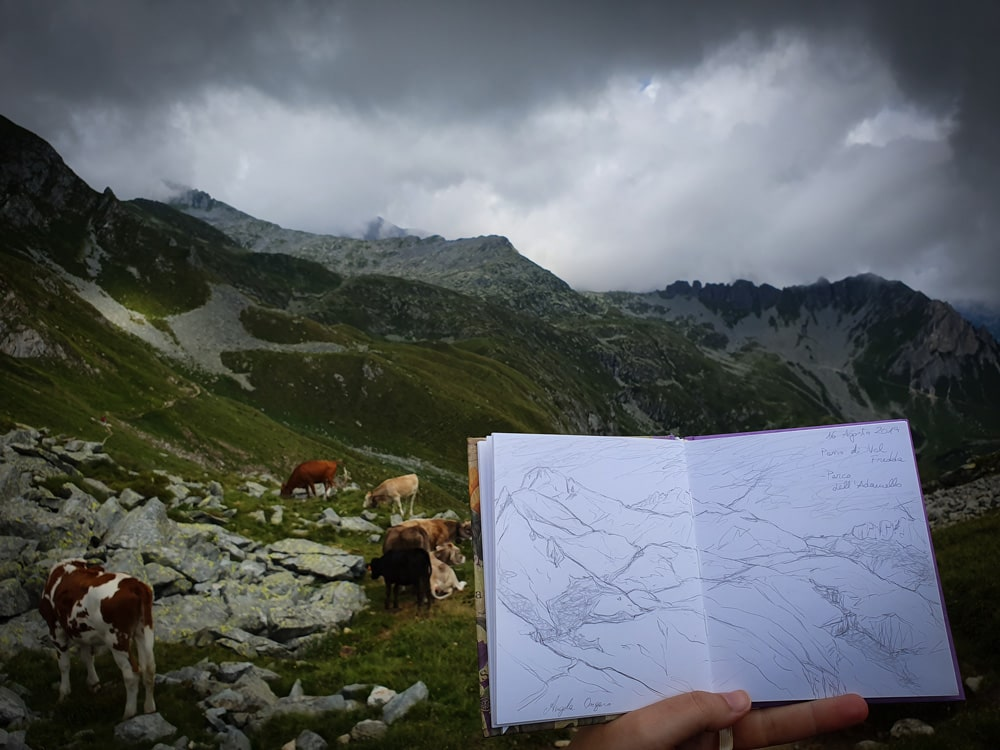 Disegnare all'aperto la natura