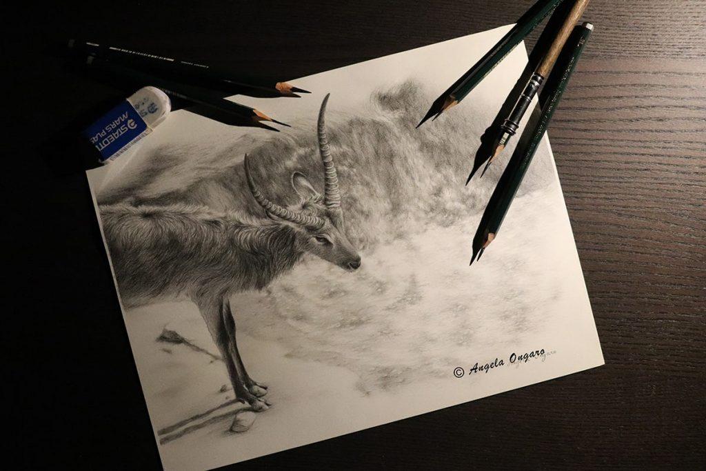 disegno-a-matita-come-scegliere-le-matite-di-grafite